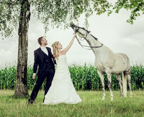 Romantische Hochzeitsfotos, Paarshooting, Pferd, Schimmel, Hambach