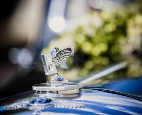 Detailfoto Hochzeit, Wedding, Ringshot, Makro